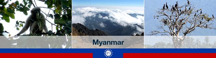 myanmar-header